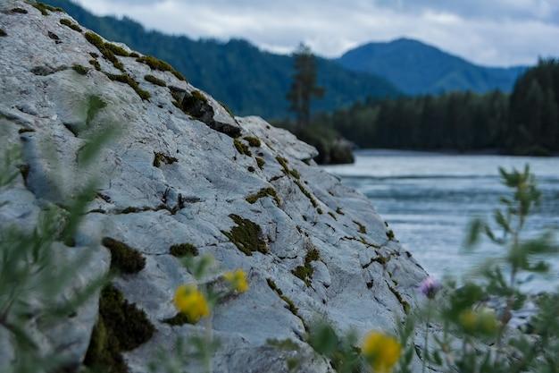 Ein großer stein mit moos bedeckt in der nähe eines gebirgsflusses