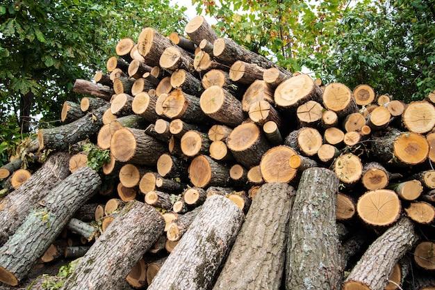 Ein großes brennholz, das im voraus für den winter vorbereitet wurde.