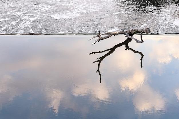 Ein haken liegt am rande eines damms in einer ruhigen wasserzone.