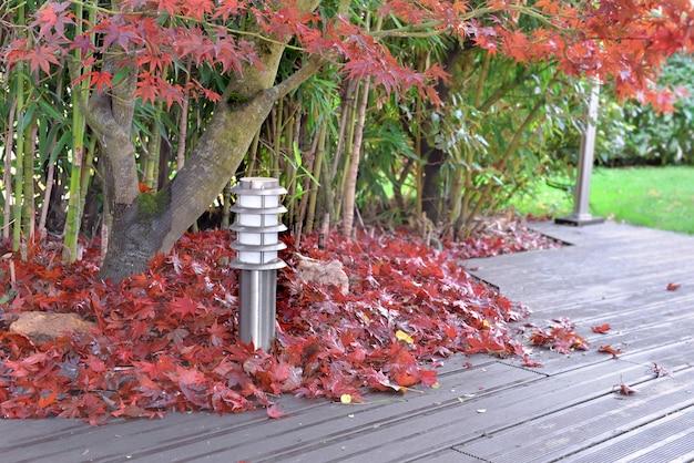 Ein haufen roter blätter aus japanischem ahorn fiel auf eine holzterrasse
