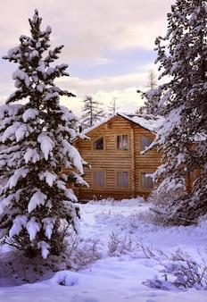 Ein haus im aktru-tal eine schneebedeckte lichtung inmitten hoher tannen