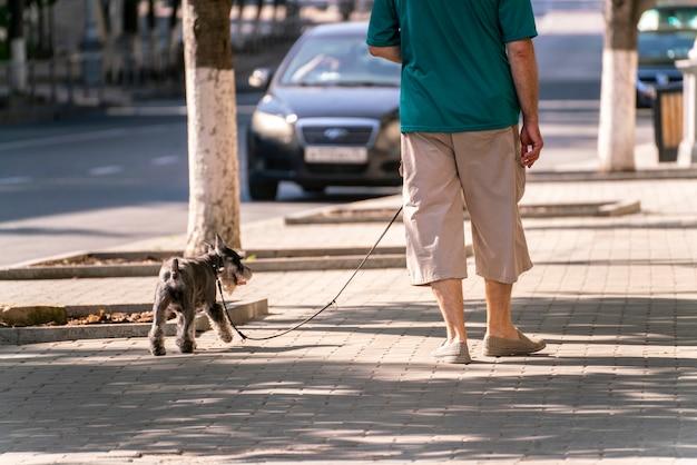 Ein haustierbesitzer, der mit haustier im freien spazieren geht