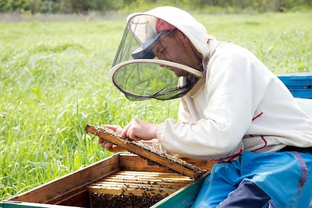 Ein imker sammelt honig. imkerei-konzept. imker arbeitet mit honigrahmen