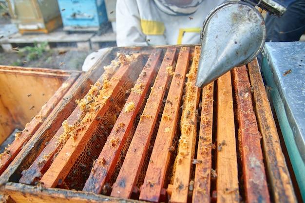 Ein imker überprüft die bienenstöcke