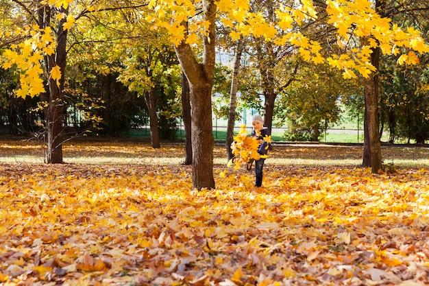 Ein junge tritt im herbst während eines spaziergangs im park laub, ahornbäume mit gelben blättern wachsen herum