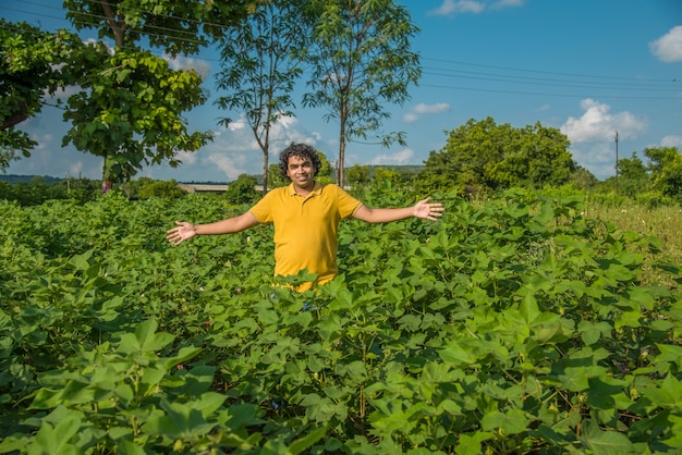 Ein junger bauer auf einer baumwollfarm untersucht und beobachtet das feld.