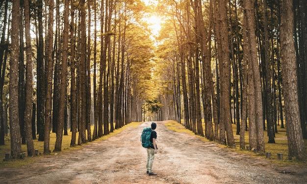 Ein junger kerl mit einem rucksackreisenden, der im wald steht. rückansicht