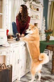 Ein junges trauriges mädchen mit einem gehorsamen hund sitzt auf einer kommode am fenster