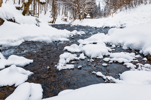 Ein kalter bergbach fließt zwischen steinen und bäumen in den schneebedeckten bergen der karpaten