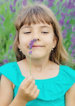 Ein kind auf einem blühenden gebiet des lavendels. tiefenschärfe.