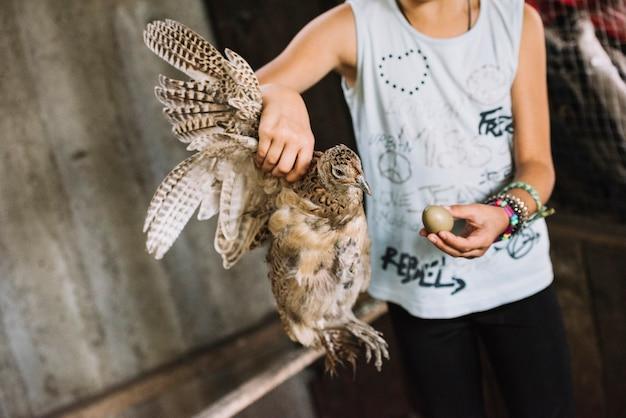 Ein kind, das in der hand gemeinen fasan und ei hält