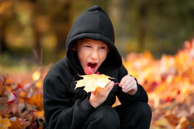 Ein kind, das in einem schönen herbstpark steht, hält blätter in der hand und möchte es abbeißen.