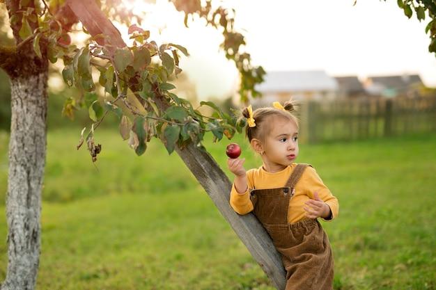 Ein kind isst an einem herbstabend bei sonnenuntergang im garten einen roten apfel und schaut weg