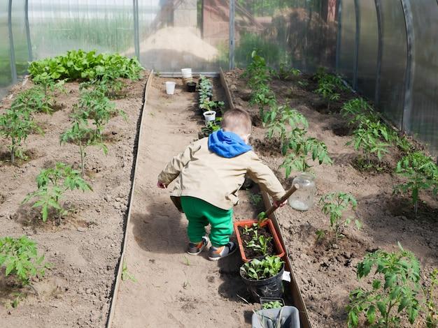 Ein kind spielt in einem gewächshaus, um gemüse anzubauen