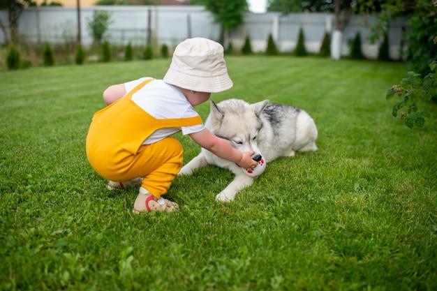 Ein kleiner junge, der mit dem hund im garten spielt