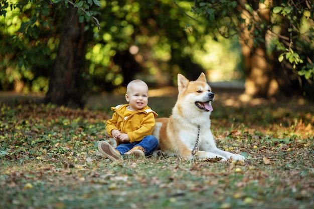 Ein kleiner junge und ein roter hund sitzen im herbstpark