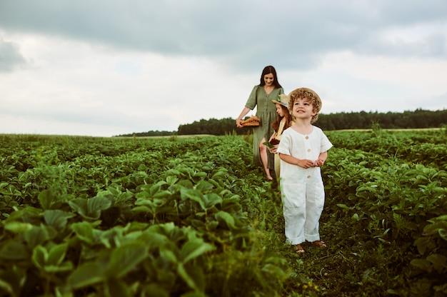 Ein kleiner kaukasischer junge in einem hut mit seiner schönen mutter und schwester mit einem korb erdbeeren sammelt eine neue ernte auf einer grünen wiese