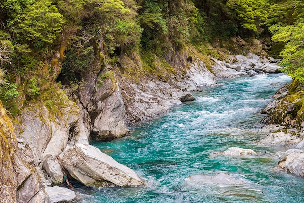 Ein kleiner schneller strom zwischen den felsen der südinsel neuseelands