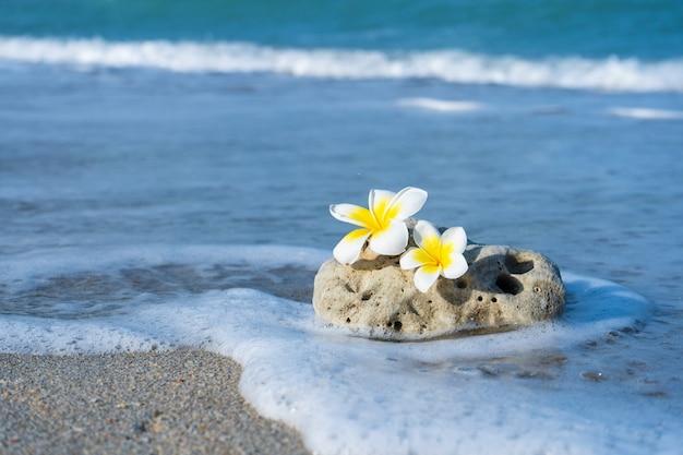 Ein kleiner stein von interessanter glatter form wird am strand von wellen gewaschen. ruhe und entspannung durch das meereskonzept