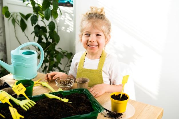 Ein kleines blondes mädchen in einer schürze ist damit beschäftigt, samen für setzlinge zu pflanzen, lächelt, das konzept der kindergartenarbeit.