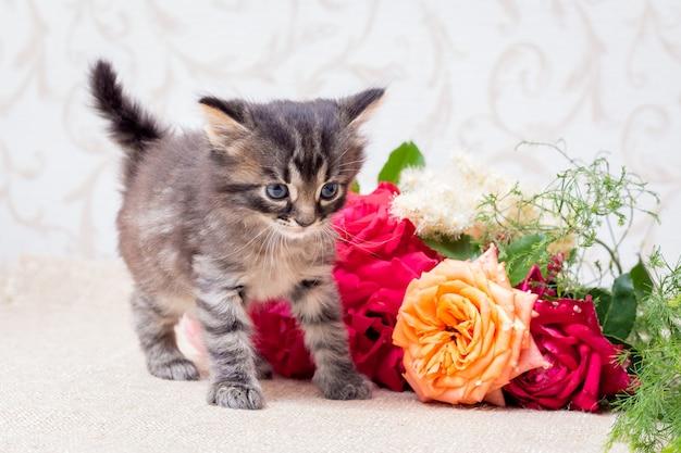 Ein kleines kätzchen in der nähe eines rosenstraußes. herzlichen glückwunsch zum urlaub