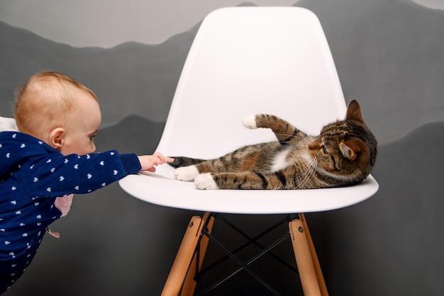 Ein kleines kind spielt mit einer flauschigen katze, die auf einem weißen stuhl liegt.