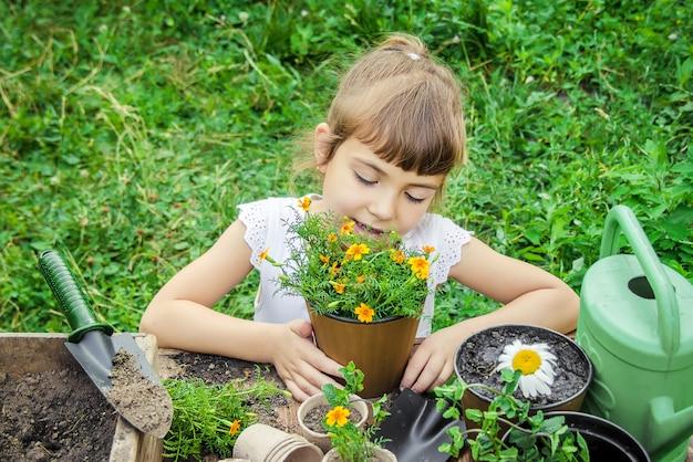 Ein kleines mädchen pflanzt blumen. der junge gärtner. tiefenschärfe.