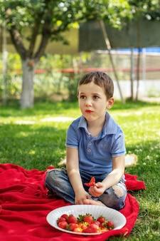 Ein kleines süßes baby sitzt im garten auf einer decke und isst rote saftige und frische erdbeeren