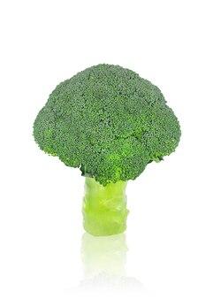 Ein kopf des frischen organischen brokkolis auf weißem lokalisiertem hintergrund mit schnittpfad.