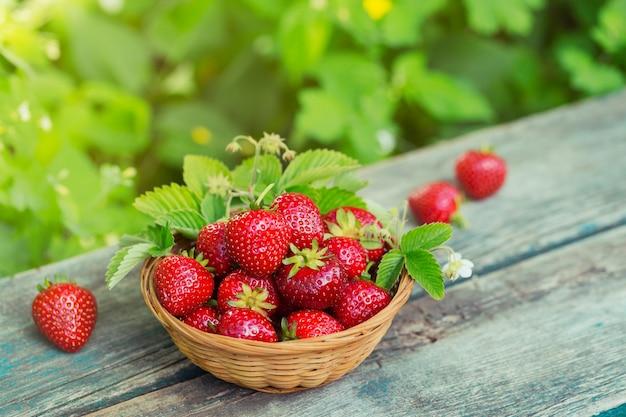Ein korb von roten saftigen erdbeeren auf rustikalem holztisch vor dem hintergrund von gebläuten grüns