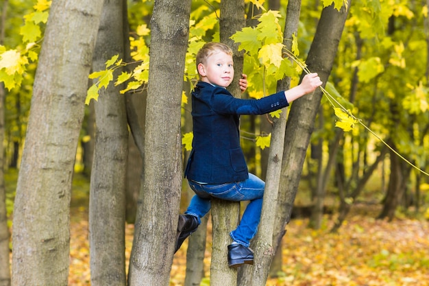 Ein lächelnder junge kletterte auf einen baum im park