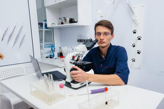 Ein männlicher arzt im labor untersucht viren und bakterien unter einem mikroskop. erforschung gefährlicher viren und bakterien.