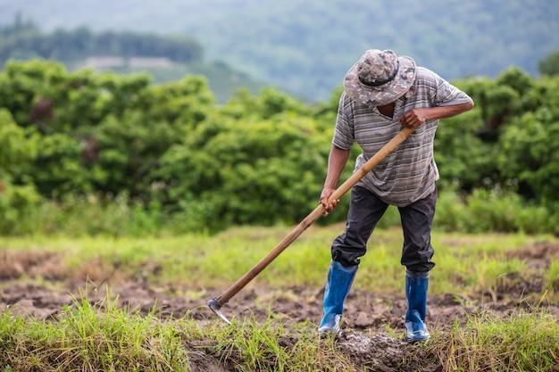 Ein männlicher bauer, der mit einer schaufel den boden in seinen reisfeldern gräbt.