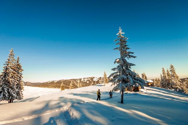 Ein männlicher bergsteiger, der auf einem gletscher geht. bergsteiger auf einem schneebedeckten berg an einem sonnigen wintertag.