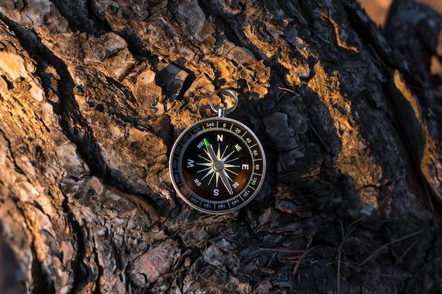 Ein magnetischer kompass in einem herbstbaum gegen.