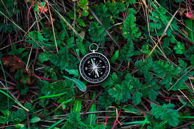 Ein magnetischer kompass in einem herbstwald gegen. blühendes gras