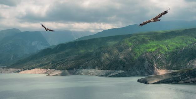 Ein malerisches panorama eines wilden paradieses, grüne berge, die ins wasser fließen. der chirkeyskoye-stausee ist der größte künstliche stausee im kaukasus. dagestan. russland.