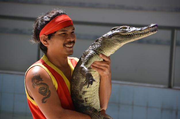 Ein mann hält ein krokodil in den händen. krokodilshow im zoo von phuket, thailand - dezember 2015: krokodilshow auf der krokodilfarm. diese aufregende show ist bei touristen und thailändern sehr bekannt