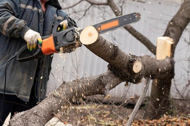 Ein mann hält eine kettensäge und sägt einen baum. hartholzverarbeitung im wald. sägemehl fliegen.