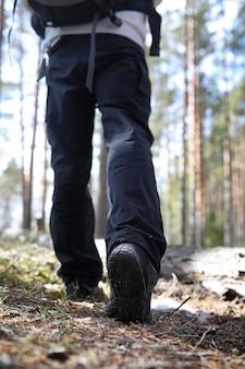 Ein mann ist ein tourist in einem kiefernwald mit einem rucksack. eine wanderung durch den wald. kiefernreservat für touristische spaziergänge. ein junger mann bei einer wanderung im frühjahr.
