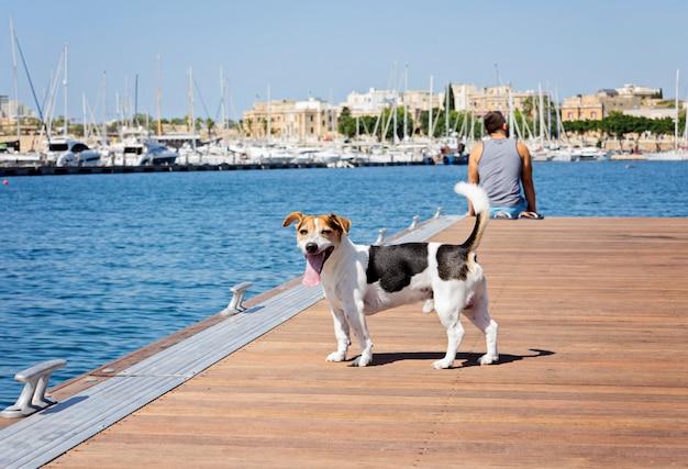 Ein mann mit einem hund, der auf dem schwimmenden pier geht