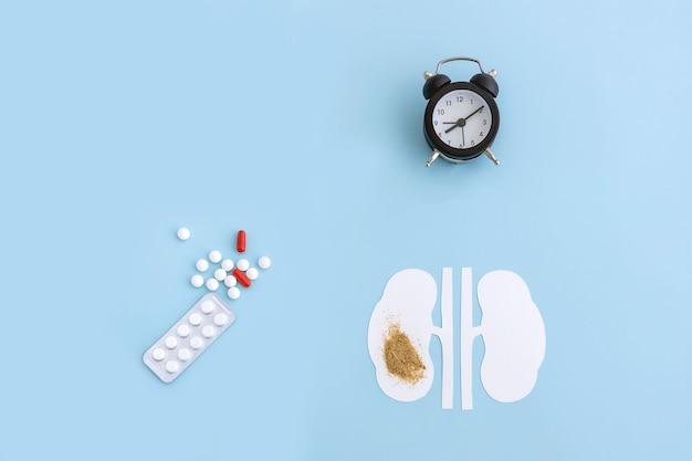 Ein modell einer menschlichen nierenpille und einer uhr