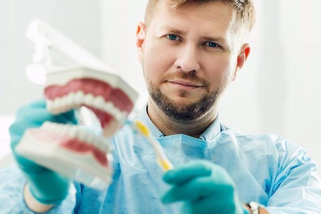 Ein modell eines menschlichen kiefers mit zähnen und einer zahnbürste in der hand des zahnarztes