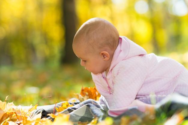 Ein neugieriges baby, das zwischen hellem licht und gelbem herbstlaub spielt.