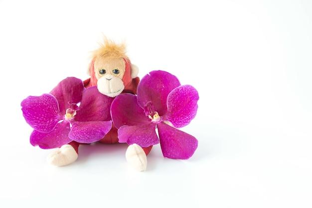 Ein niedlicher affe sitzt mit frischer orchideenblume