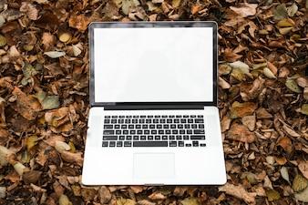 Ein offener Laptop mit leerem weißem Bildschirm auf Herbstlaub