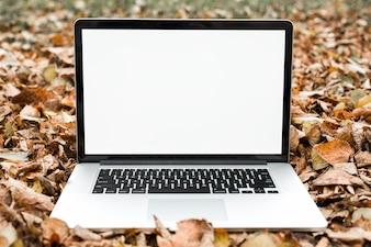 Ein offener Laptop mit leerem weißem Bildschirm auf trockenen Blättern des Herbstes
