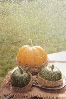 Ein orangefarbener kürbis und zwei grüne kürbisse auf dem holztisch verzierten sackleinen und seil. unter regen. draußen.