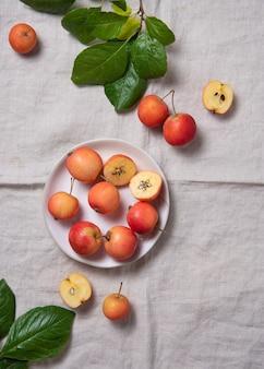 Ein paar saftige mini-äpfel in einem weißen teller auf einer tischdecke aus natürlichem leinen. draufsicht und kopierraum