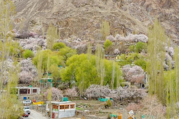 Ein panoramablick auf das turtuk-tal und den shyok-fluss.